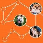 Neural Structured Learning: Tensorflow lernt auf Graphen und strukturierten Daten