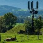 Scheuer: 1&1 Drillisch beginnt 4G-Ausbau gegen 5G-Ratenzahlung