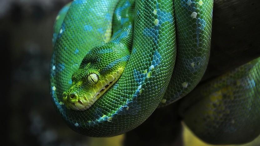 Python 2.7 wird von der Community schon in wenigen Monaten nicht mehr unterstützt.