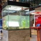 250 MBit/s: Vodafone und Philips Lighting verbinden 5G und Licht
