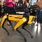 Boston Dynamics: US-Polizei testet Roboterhund Spot