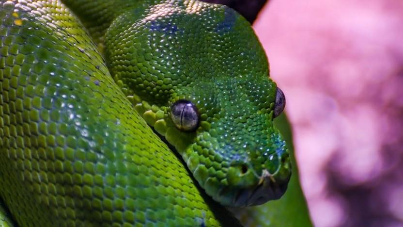 Python 2.7.18 wird im April 2020 erscheinen.