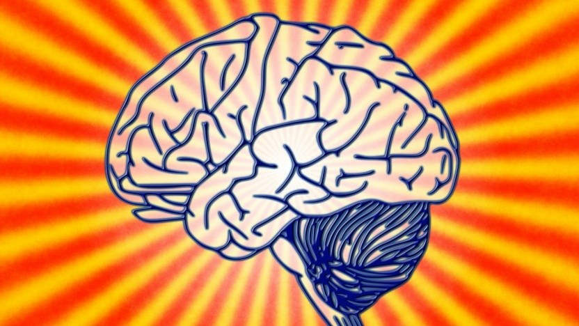 Kann leicht gehackt werden: Das Gehirn.
