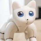 Roboterhaustier: Marscat hört im Gegensatz zu echter Katze auf Sprachbefehle