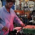 Akkutechnik: In Zukunft kommen Akkus mit weniger seltenen Rohstoffen aus