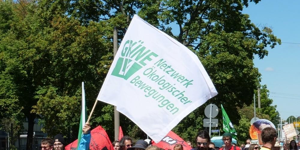 Grünheide: Umweltbewegung agiert bei Tesla-Fabrik unglücklich