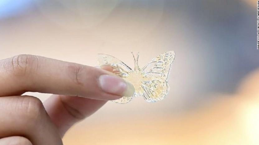 Dieser Schmetterling ist ein erstes Ergebnis der Forschungen.