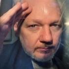 Wikileaks: Worum es im Fall Assange nun geht