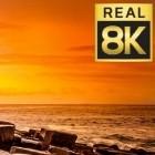 8K/4K-Fernseher: LG schränkt HDMI-2.1-Unterstützung ein