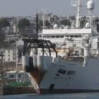 Datenverkehr: Hai beißt Kabel