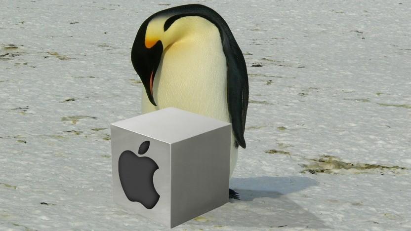 Auch Pinguine mögen Äpfel-Kisten.