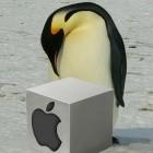 Catalina und Big Sur: MacOS als virtuelle Maschine unter Linux