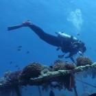 Internet: Aqua-Fi ermöglicht Datenkommunikation unter Wasser