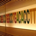 DNA-Speicher: Netflix lässt Serienfolge in DNA speichern