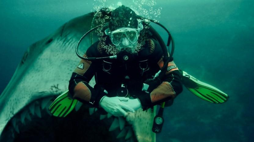 Nicht gefressen zu werden, sondern mit den Haien zu schwimmen, ist die Kunst.