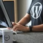Wordpress: Sicherheitsproblem bei Dateiverwaltungs-Plugin