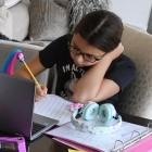 Home Schooling: Deutschland schneidet beim Online-Unterricht schlecht ab