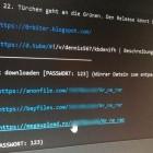 0rbit: Promi-Hacker zu Bewährungsstrafe verurteilt