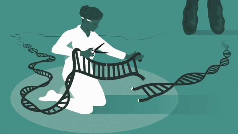 Die Möglichkeit zum gezielten Schneiden und Editieren von DNA gibt es erst seit 2012.