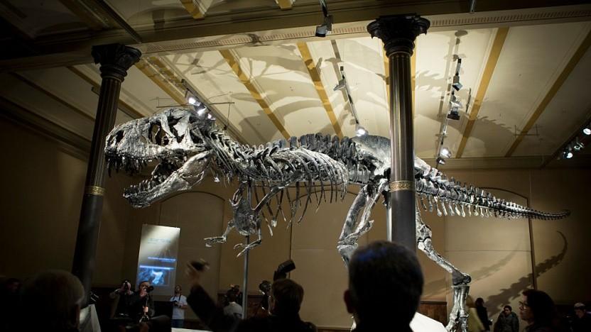 Das MDN-Logo ist ein Tyrannosaurus Rex.