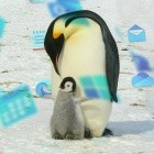 Betriebssysteme: Warum Microsoft nie auf Linux umsteigen wird