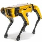 Roboter: Hyundai will Boston Dynamics kaufen