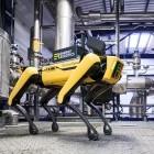 Energy Robotics: Ein kopfloser Hund für 74.500 US-Dollar