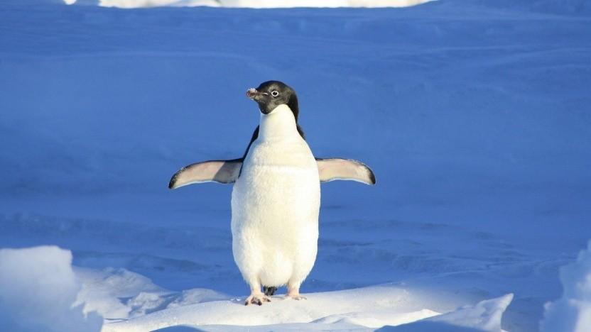 Linux 5.10 ist erschienen.