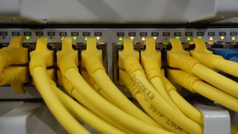 Netzwerkkabel in einem Switch