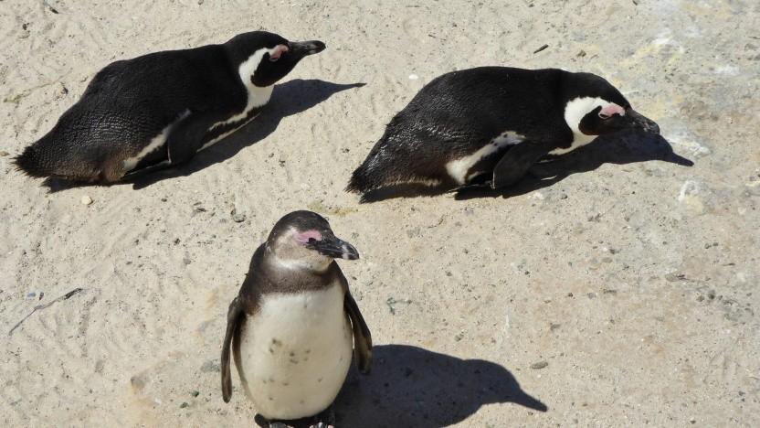 Linux unterstützt Itanium künftig nicht mehr.