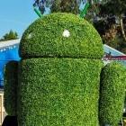 Android: Google präsentiert erste Vorschau von Android 12