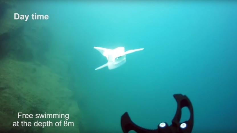 Tauchroboter bei Test: Vorbild Tiefseefisch
