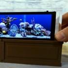 Serene Screen: Tüftler baut winziges Screensaver-Aquarium mit Rock Pi X