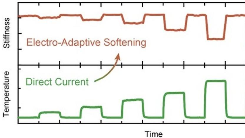 Zusammenhang zwischen Steifheit und Temperatur