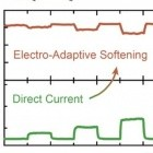Biomimetik: Adaptives Material ändert sich von steif zu weich und zurück