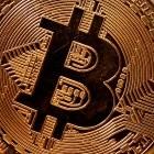 Rekordspende: Eine Million Euro für die Grünen aus Bitcoin-Gewinnen