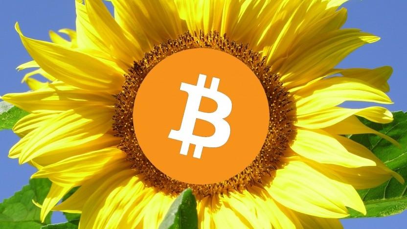 Der Bitcoin-Boom sorgt für eine Rekordspende zugunsten der Grünen.
