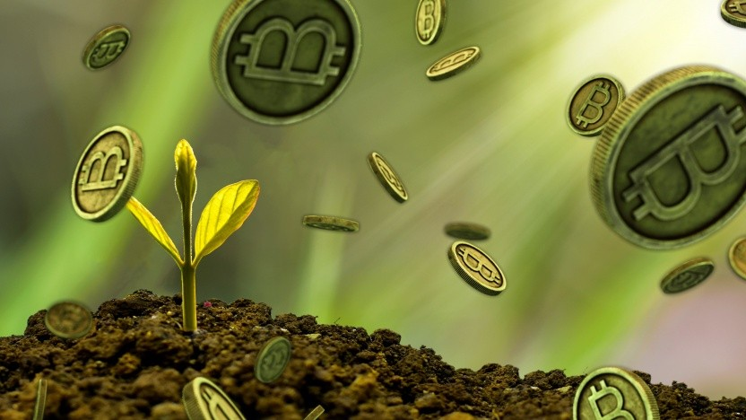 Darf eine Öko-Partei Geld aus einer energieintensiven Kryptowährung annehmen?