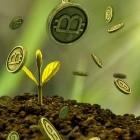 """Interview mit Grünen-Rekordspender: """"Das Bitcoin-Ökosystem gehört zerstört"""""""