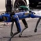 Militarisierung der Polizei: Kein Roboterhund mehr bei der New Yorker Polizei