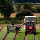Agstack: Linux Foundation kümmert sich um Landwirtschaft