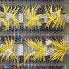 Sonderschaltungen: Netzbetreibern werden bei Speedtests Tricks vorgeworfen