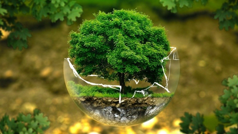Das BMU richtet ein zentrales Umweltinformationszentrum ein.