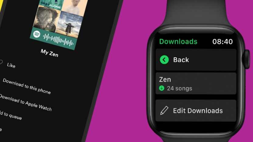 Spotify mit Offline-Funktion auf der Apple Watch