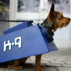 Android-E-Mail-Client: K9 Mail bringt langersehntes UI-Update
