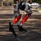 Wissenschaft: Zweibeiniger Straußenroboter joggt 5 Kilometer weit