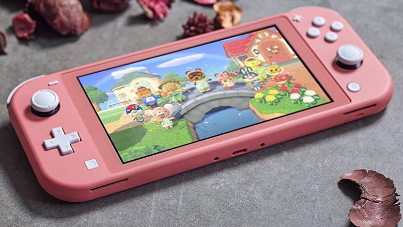 Artwork der Nintendo Switch Lite