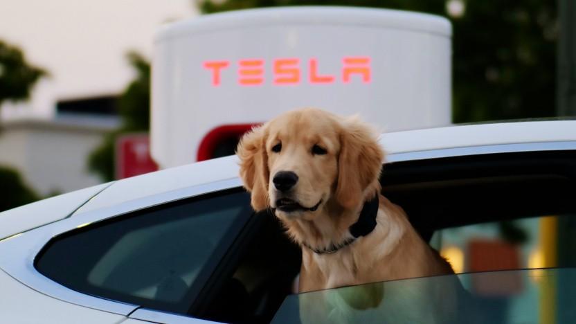 Ladesäule von Tesla
