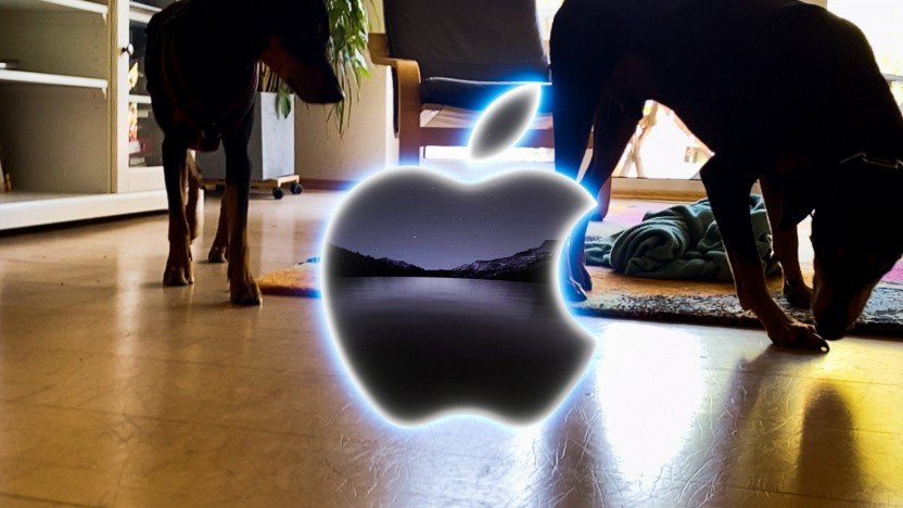 Riecht nach nichts: Golem.de-Redaktions-Hundis beim Tanz um das AR-Apple-Logo
