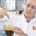 Lebensmittelforschung: Erster Kaffee im Labor gezüchtet